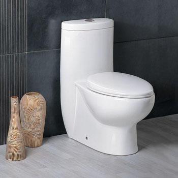 Toilet Display View