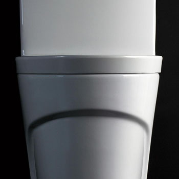 Toilet Front Close-up