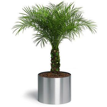 Blomus Planters