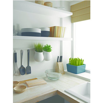 Example Shelving 1