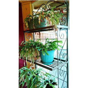 Grace Collection 4 Shelf Plant Rack