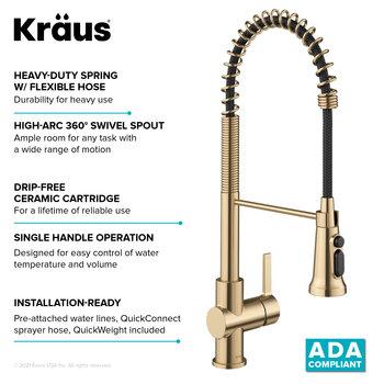 KRAUS ADA Complaint Info