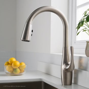 Esina Single Handle Pull Down Faucet