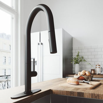 Matte Black Faucet with Deck Plate - Illustration